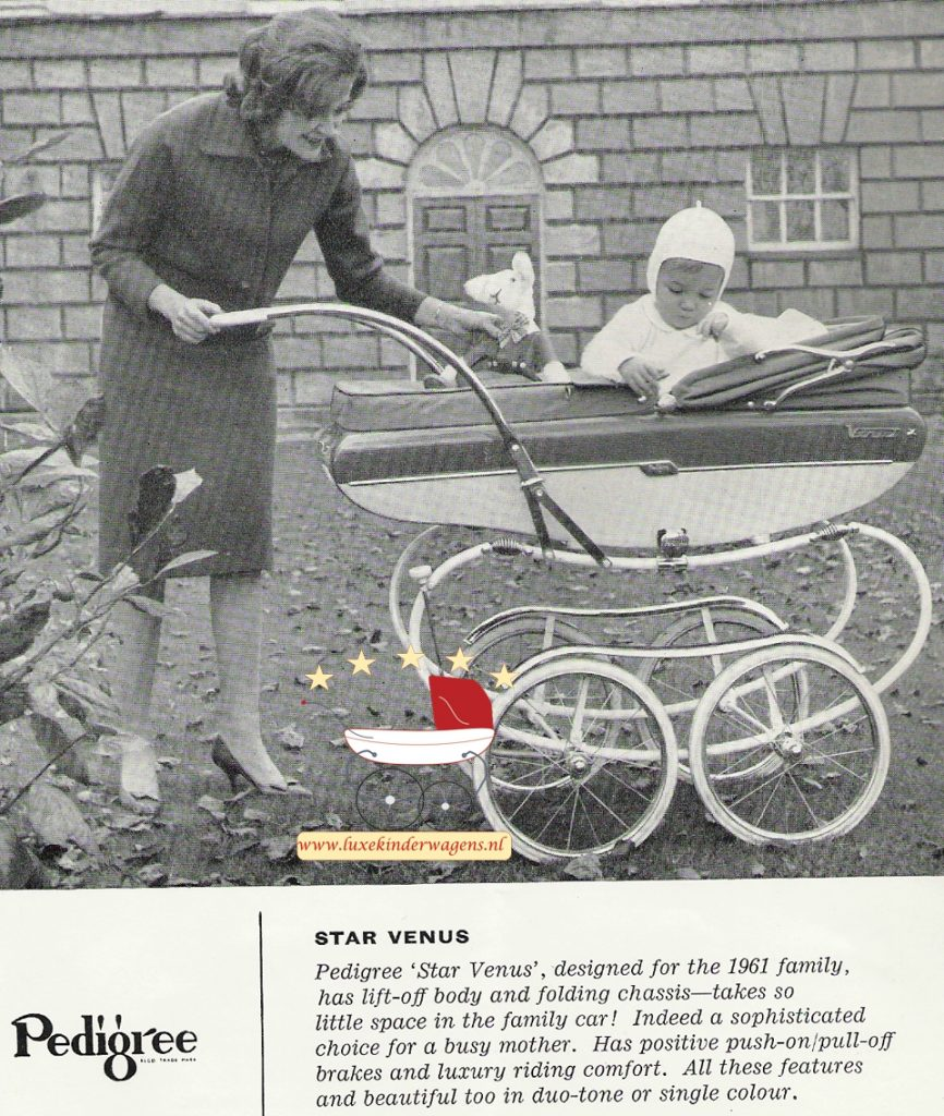 Pedigree Star Venus 1961